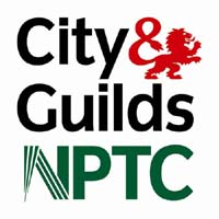 All our tree surgeons are NPTC qualified